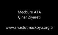Mecbure ATA Çınar Ziyareti